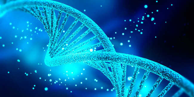 Bị mụn lưng do gen di truyền
